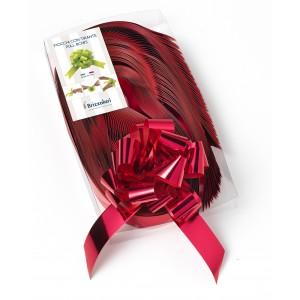 500 Palloncini Rosa 20 Cm  Pastello